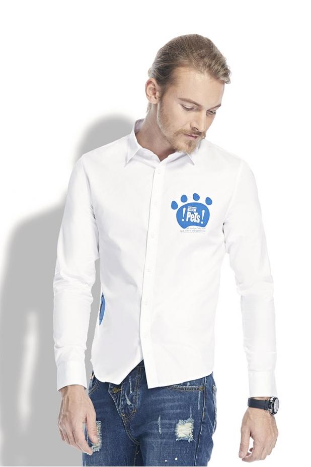 衬衫23(爱宠大机密)